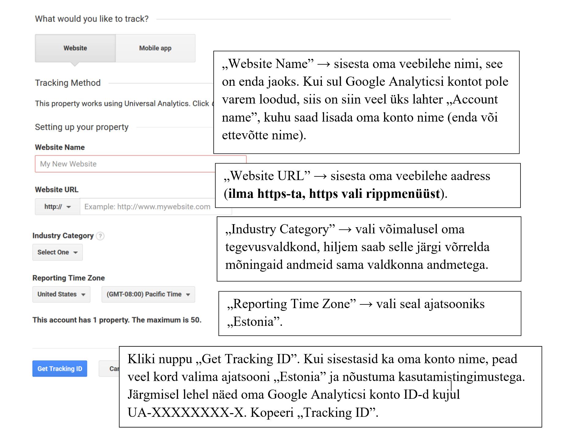 Google AnaLyticsi ja veebilehe sidumine