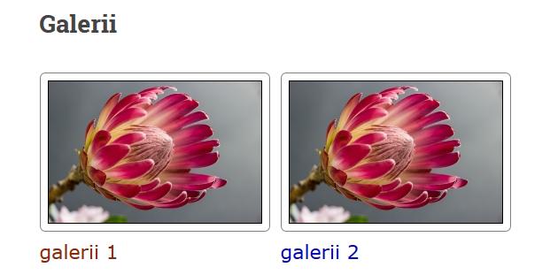 galerii_parast