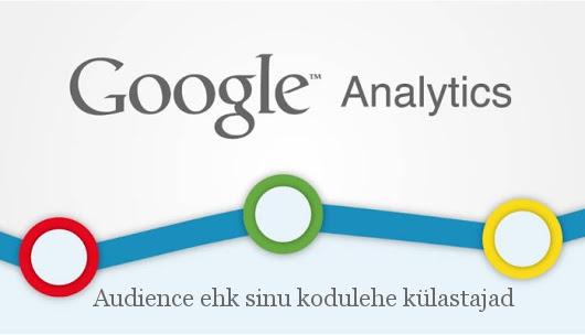 kodulehe statistika - audience