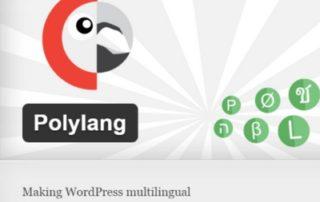 Mitmekeelsuse plugin PolyLang
