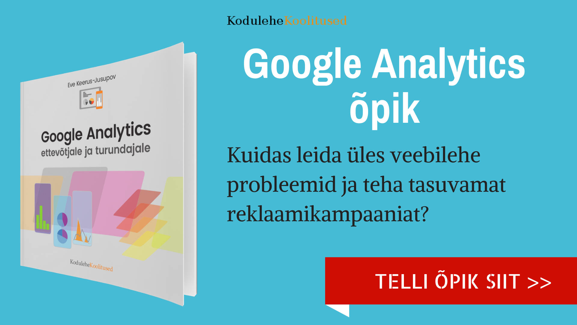 Google Analytics õpik ost